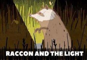 Raccoon and the Light - La rencontre amusante entre les animaux et la technologie.